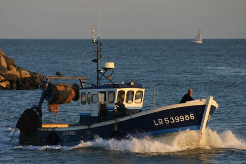 http://www.charente-maritime.images-en-france.fr/photos/depart-bateau-peche.jpg